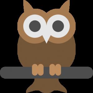 owl-oversight